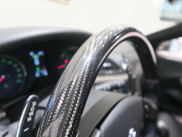 Sオートマチック カーボンステアリング・20インチホイール(20枚目)