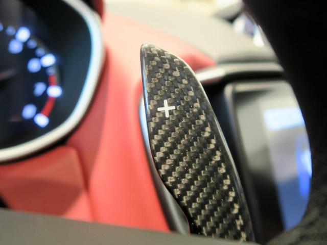 S グランスポーツ 2019モデル インテリアカーボンPKG(19枚目)