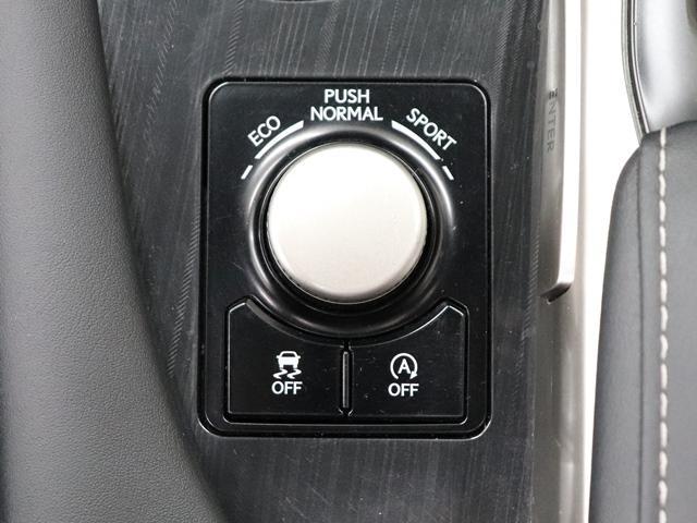 RX200t ワンオーナー 純正エンジンスターター レーダークルーズ 自動開閉テールゲート オートハイビーム リアフォグライト 純正ナビ バックカメラ(30枚目)