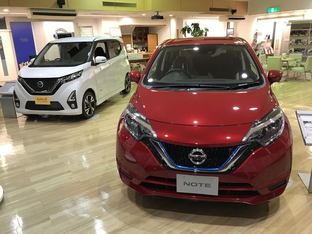 松本日産自動車(株) あずみ野カーランド(6枚目)