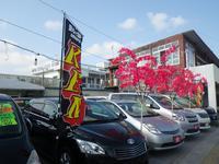 宜野湾店では、乗用車をメインに展示しております!お気軽に立ち寄ってください♪