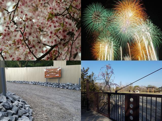 春には桜が 夏には昆虫採集や花火大会が敷地内から楽しめます♪