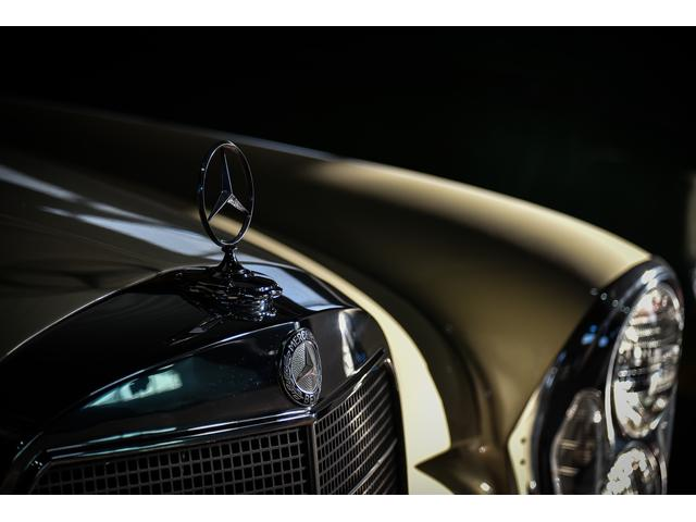 CROCO CARS(6枚目)