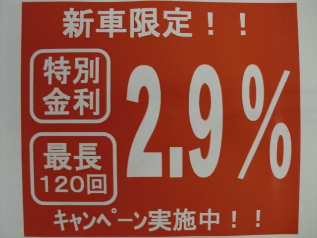 新車限定の特別低金利!!2.9%のキャンペーン実施中!!最長120回の10年までローンを組めます!!