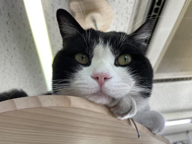 幸せの入り口 イーカーズ深谷店(2枚目)