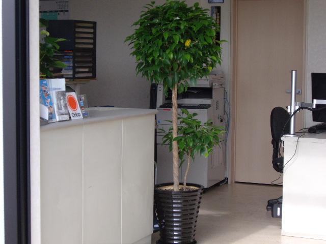 事務所入り口です。 右側は商談コーナーです。