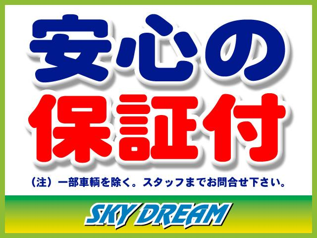 SKY DREAM(株)スカイ・ドリーム (2枚目)