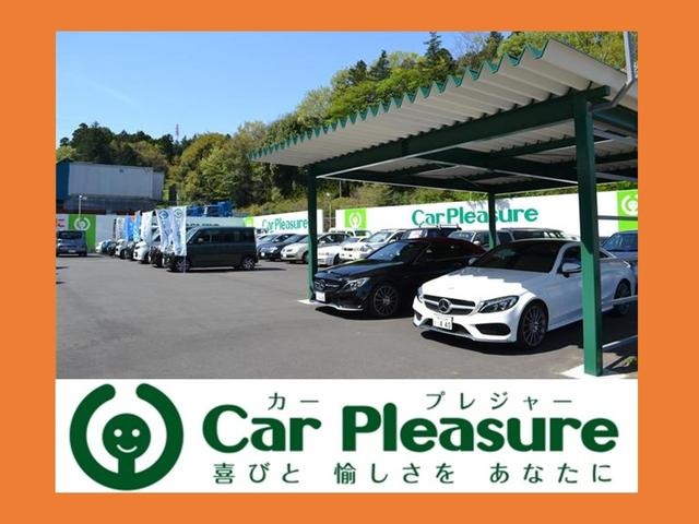 Car Pleasure(1枚目)