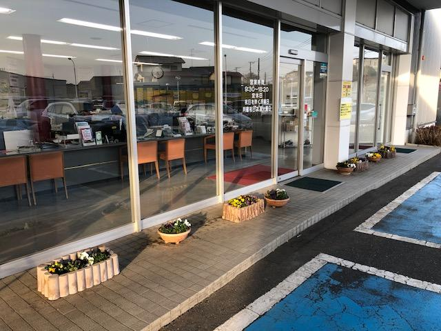 季節の花を植えています是非ご覧ください