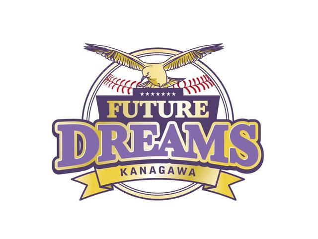 当社はプロ野球独立リーグチーム神奈川フューチャードリームスを応援しています!