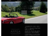 APPEA sports&vintage