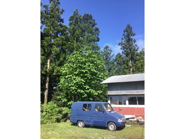 TAIYO DRIVE 太陽ドライブ(3枚目)