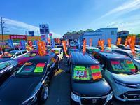 第二展示場です。軽自動車から福祉車両、高級車まで車種問わず車を展示しております。