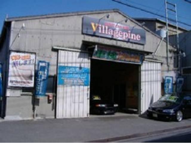 Village pine