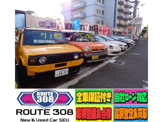 R308(ルート308)(1枚目)