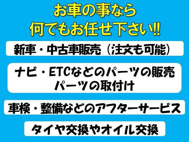 カーバンク・シガ(4枚目)