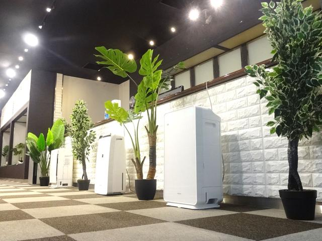 くるま館 ぶぅぶぅ大阪