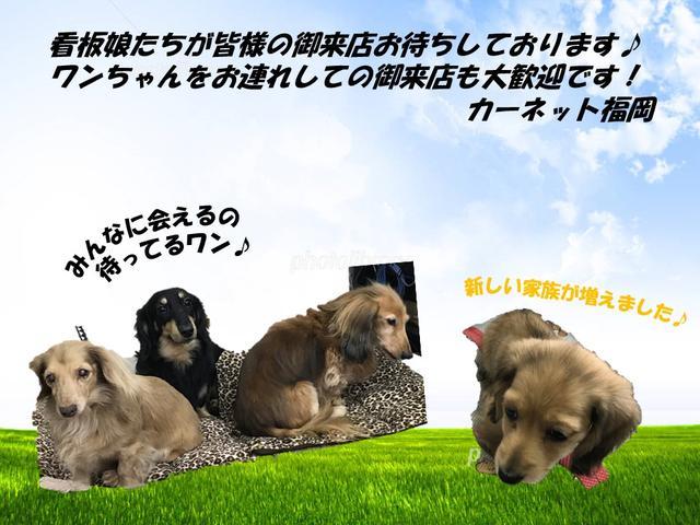 カーネット福岡(株)(1枚目)