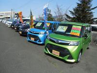 人気の車種や人気色も常時チェックしており、お客様が欲しい車両を展示するよう心がけております!