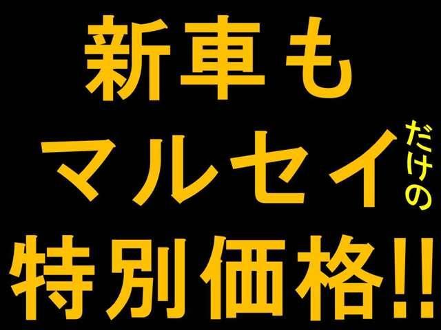 マルセイ(6枚目)
