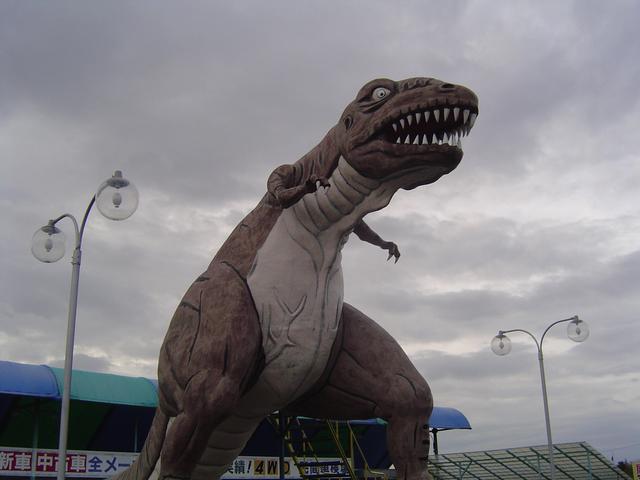 我が社のシンボル=ティラノザウルスです('・皿・´)