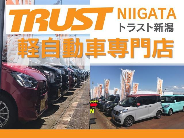 トラスト新潟 軽自動車専門店 (株)佐野自動車商会
