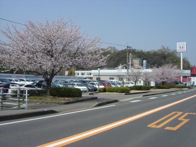 [香川県]Honda Cars 東かがわ 東かがわ店 認定中古車取扱店