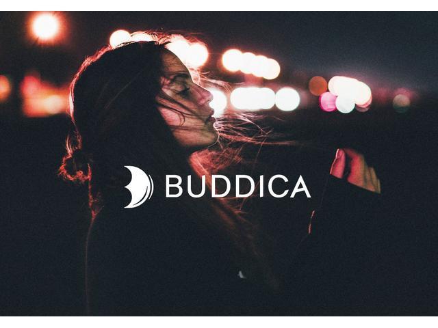 (株)BUDDICA(バディカ) 本店(0枚目)