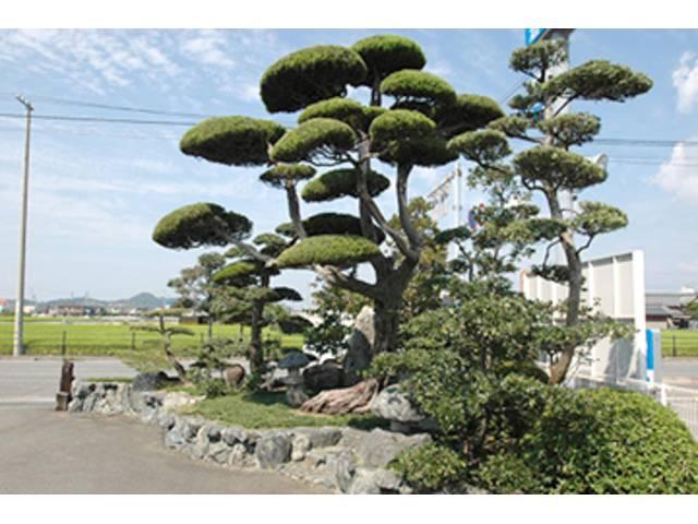 会社のシンボルともなる大きな木。地域の人には好評の庭園が目印です