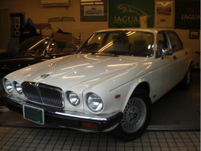 ジャガーXJ−64,2!ジャガーホワイトの希少車です。ジャガー、ダイムラーの希少車をお楽しみください