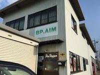 BP.AIM