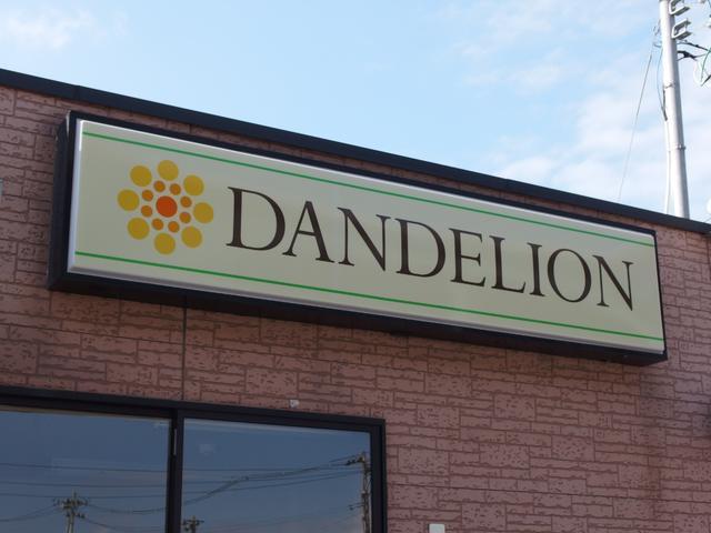 DANDELION ダンデライオン(6枚目)